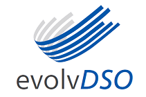 evolvDSO project logo
